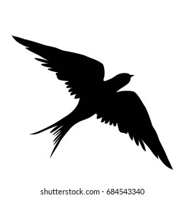 swallow silhouette - vector illustration