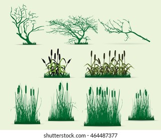 swamp trees vector pack