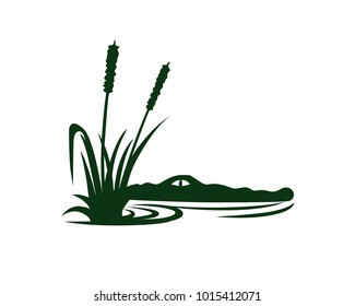 Swamp water with crocodile and alligator