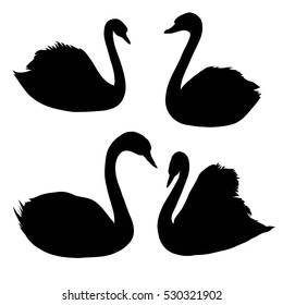 Swan silhouette - vector, illustration