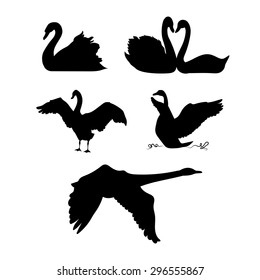Swan vector silhouettes.