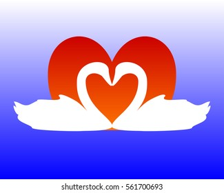 Swans forming a heart