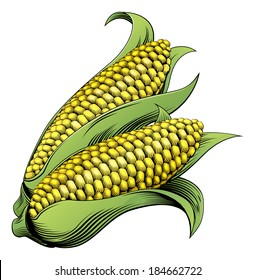 A sweet corn maize vintage woodcut illustration in a vintage style