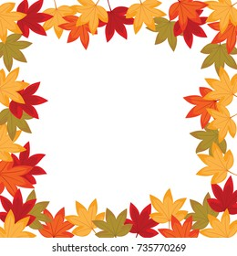 Sweet gum leaves. The flower and leaf are in the autumn. It is vector illustration for frame ans card. It vector is draw and no trace or copy image.