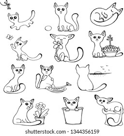 sweet little cats vector isolated