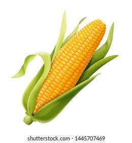 Sweet organic corncob in 3d illustration on white background