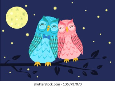 Sweet owls couple on tree branch under in the night starry sky. Cute vector illustration.