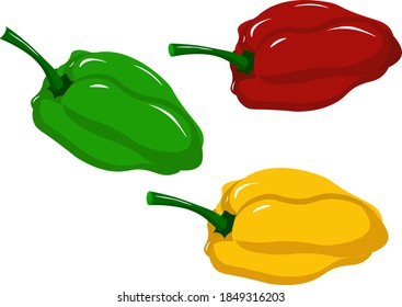 Sweet pepper for salad - green, yellow and red. Vector illustration on a white background. For cafes, restaurants and menus, logos and icons, farms and markets. Healthy and fresh food.