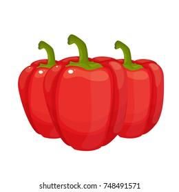 sweet pepper vector illustration