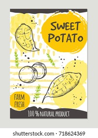 Sweet potato brochure concept design. Retro background. Hand drawn vector illustration. Can be used for street festival, farmers market, country fair, shop, menu, cafe, restaurant, poster, banner.