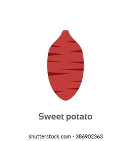 Sweet potato isolated vector icon