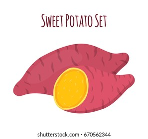 Sweet potato. Organic healthy vegetable. Fresh natural root. Made in vector cartoon flat style