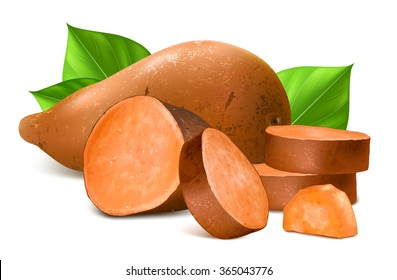 Sweet potato with slices and leaves. Fully editable handmade mesh. Vector illustration.