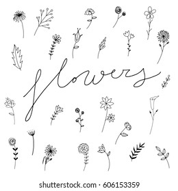 Sweet vector flowers hand drawn, black flowers, hand drawn illustration