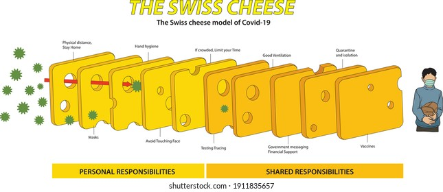 The Swiss Cheese Model of Covid-19 Pandemic infographic - vector