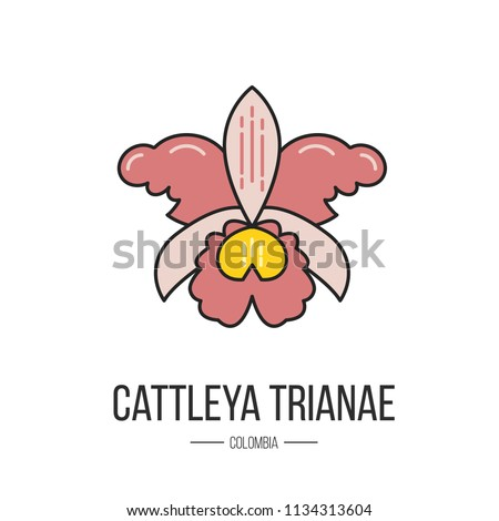 Symbol Colombia Cattleya Trianae Made Flat Stock Vector Royalty