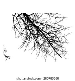 Symbol double exposure with black tree isolated on white background.Vector  illustration.Black and white double exposure silhouette numbers combined with photograph of nature.Letters of the alphabet