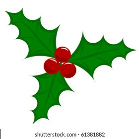Symbolic Christmas holly berry vector illustration