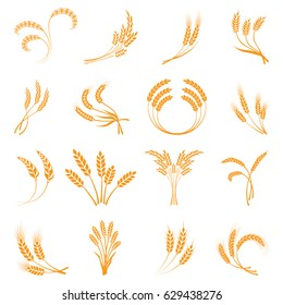 Symbols. for logo design Wheat. Agriculture, corn, barley, stalks, organic plants, bread, food natural harvest vector illustration on white background isolated