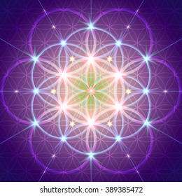 Symbols of sacred geometry, depict fundamental aspects of space and time.Flower of life symbol variations.