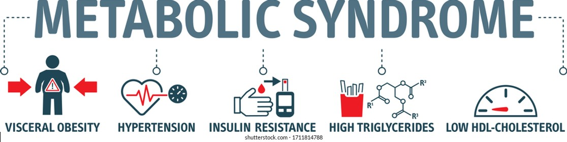 Symptoms of Metabolic Syndrome vector icon concept. Hypertension, Insulin  Resistance, High Triglycerides, Low HDL-Cholesterol, Visceral Obesity