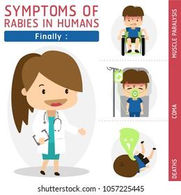 Symptoms of Rabies in Humans, Finally, Rabies vector