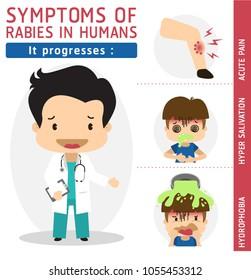 Symptoms of Rabies in Humans,It progresses, Rabies vector