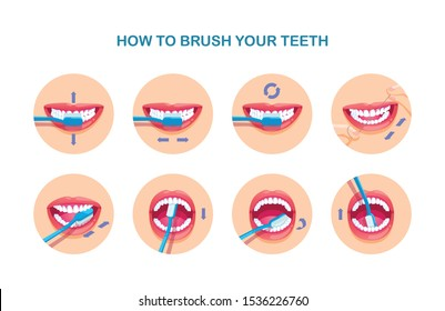 Table shows how to brush your teeth. Modern flat style vector illustration clipart.