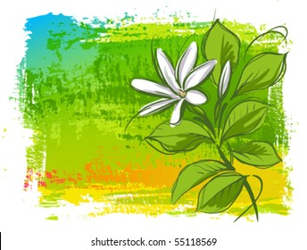Tahitian Tiare - vector floral background