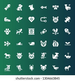 tail icon set. Collection of 36 filled tail icons included Horse, Whale, Fox, Scorpion, Parrot, Kangaroo, Cat, Devil, Peacock, Shark, Goldfish, Fish bone, Rooster, Lizard, Veterinary