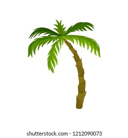 Tall palm tree with large bright green leaves. Tropical plant. Nature theme. Flat vector for summer postcard or advertising poster