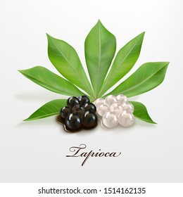 Tapioca gelled balls for bubble tea, Tapioca black and white pearls with manioca leaf isolated on light background. Ingredients for making pearl milk tea, shaved ice at dessert shop. Food