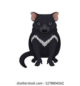 Tasmanian devil. Australian animal with black fur and white patch on chest. Fauna theme. Detailed flat vector icon