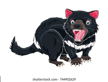 Tasmanian Devil cartoon in detail illustration