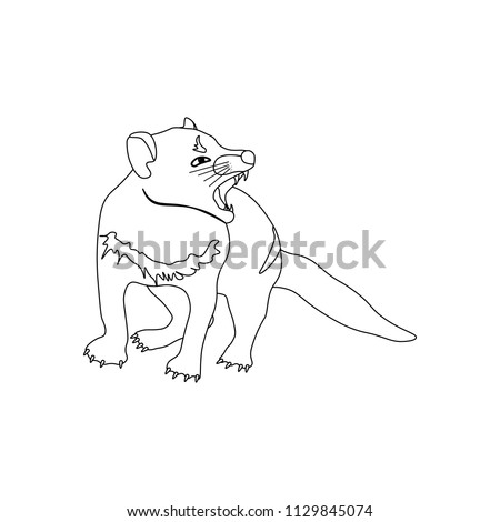 tasmanian devil coloring pages.html