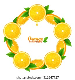 Tasty orange juicy slices with leaves vector round frame