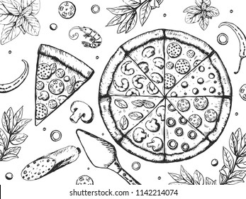 Tasty pizza ingredients set . Food background. Delicious restaurant menu. Vector illustration EPS10.