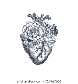 Tattoo anatomy vintage illustration. Floral anatomical heart. Vector illustration