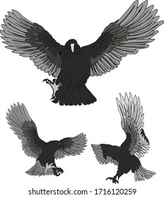 tattoo tribal American Eagle print embroidery graphic design vector art