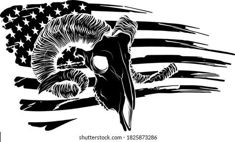 tattoo and tshirt design black and white handdrawn goat skull ornament premium vector