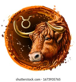 Taurus is a sign of the zodiac. Artistic, color, drawn image of the zodiac Taurus with a symbol and star scheme in watercolor style on a white background.