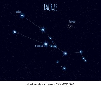 Taurus (The Bull) constellation, vector illustration with the names of basic stars against the starry sky