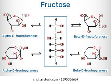 Tautomeric forms of D-Fructose. Alpha-D-fructofuranose, beta-D-fructofuranose, alpha-D-fructopyranose, beta-D-fructopyranose. Structural chemical formula. Vector illustration