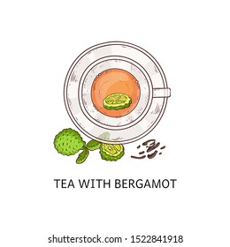 Tea with bergamot in glass cup - top view drawing. Healthy herbal leaf drink with cut up green citrus fruit and leaves, isolated hand drawn vector illustration