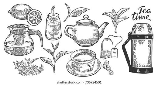 Tea cup, teapot, sugar bowl, tea leaf, tea bag, lemon and thermos. Vintage vector engraving illustration. Hand drawn design element isolated on white background.