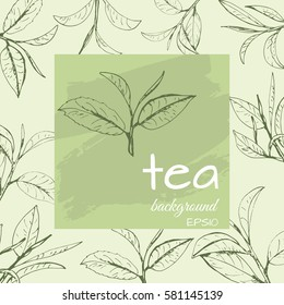 tea logo vector, background with painted leaves tea
