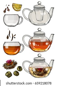 A tea set. Teapot and a mug painted lines on a white background. Vector sketch of dishes. Glass teapot, tea bag, green tea