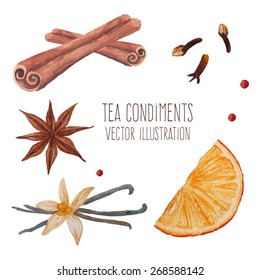 Tea spices: cinnamon sticks, star anise, vanilla. Watercolor isolated illustrations set. Vector hand drawn food objects