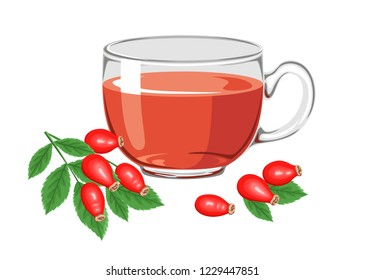 Tea with wild rose berries in a glass. Rose Hip, branch with red berries and green leaves. Vector illustration of herbal hot drink in cartoon flat simple style.