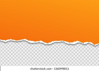 Tear paper or edge On a transparent background.